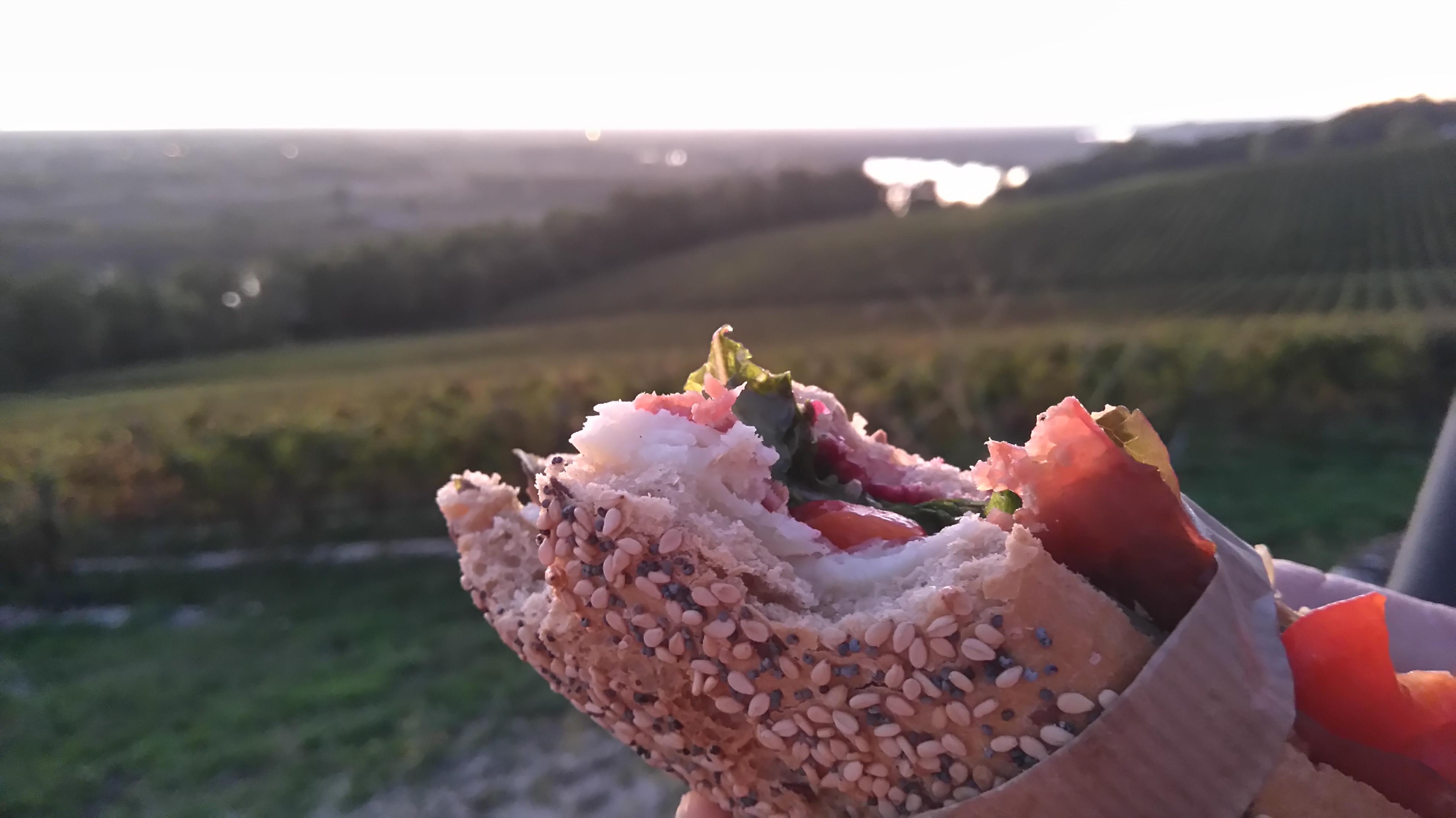 Sandwich sucré-salé au brebis, mûre et bacon